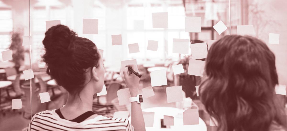 080 empleo te ayuda a encontrar al candidato ideal para tu negocio